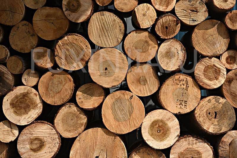 原木餐饮家具